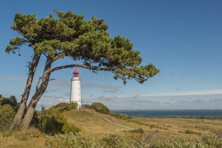 Leuchtturm Dornbusch, Insel Hiddensee