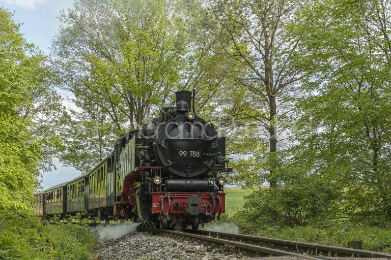 Lok Berta auf der Öchsle-Bahn, Oberschwaben